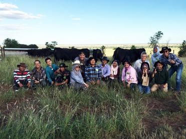 Indonesian visitors viewing bulls at 'Grandridge', April 2017.