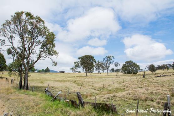 Tenterfield, NSW