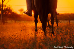 Late afternoon ride - Comet, Central Queensland