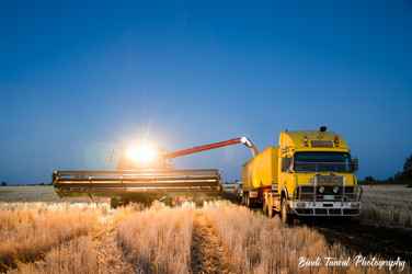 Unloading at night - Emerald, Central Queensland