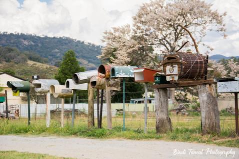 Between Tamworth & Nundle, NSW
