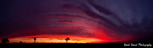 Panoramic Sunset - Comet, Central Queensland