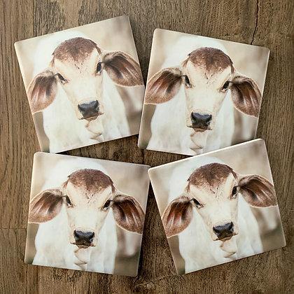 Ceramic Coasters - Big Ears