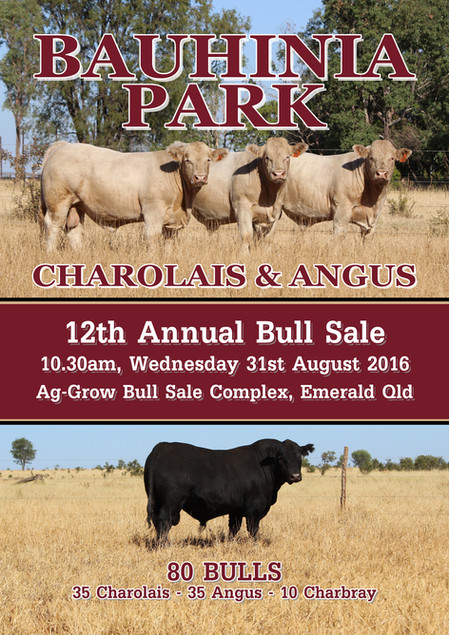 2016 Bull Sale Catalogue
