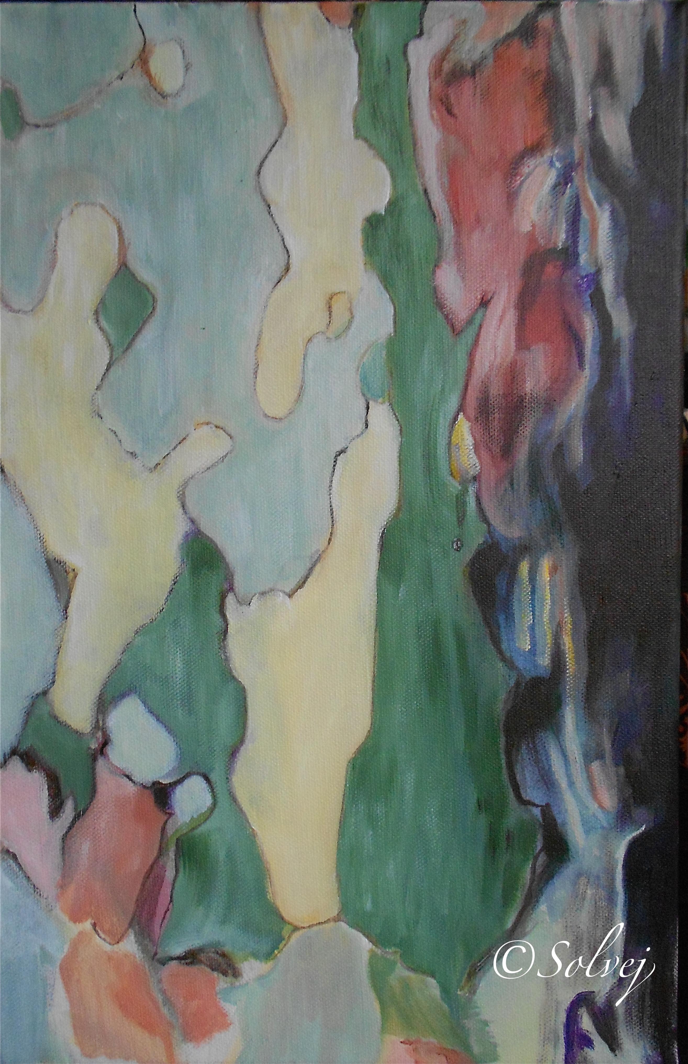 Le platane 3, écorce   579