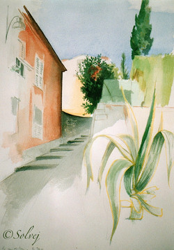 le raidillon (Nice) 210-A 30x40 8_1990