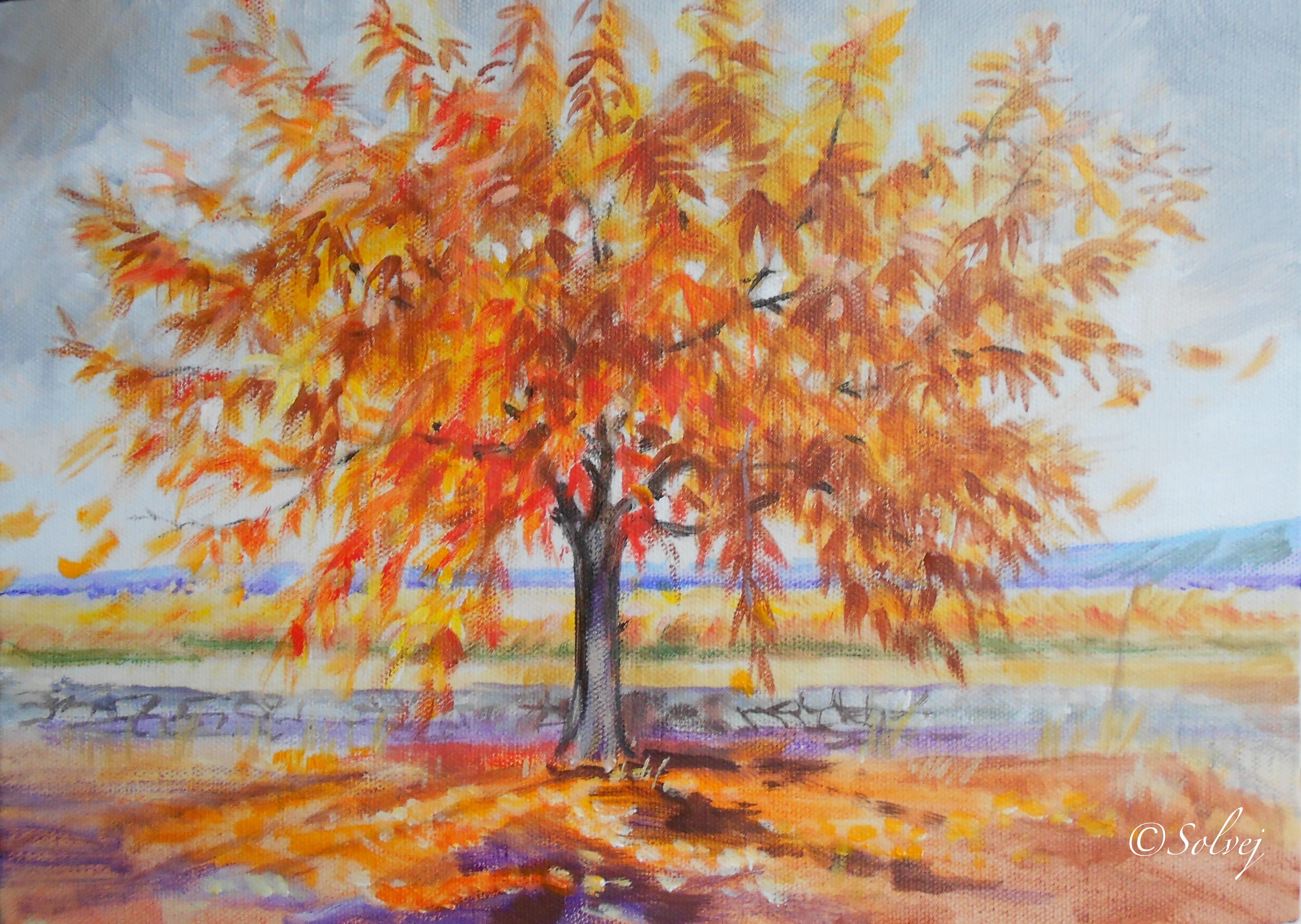 Le cerisier 4, automne   588
