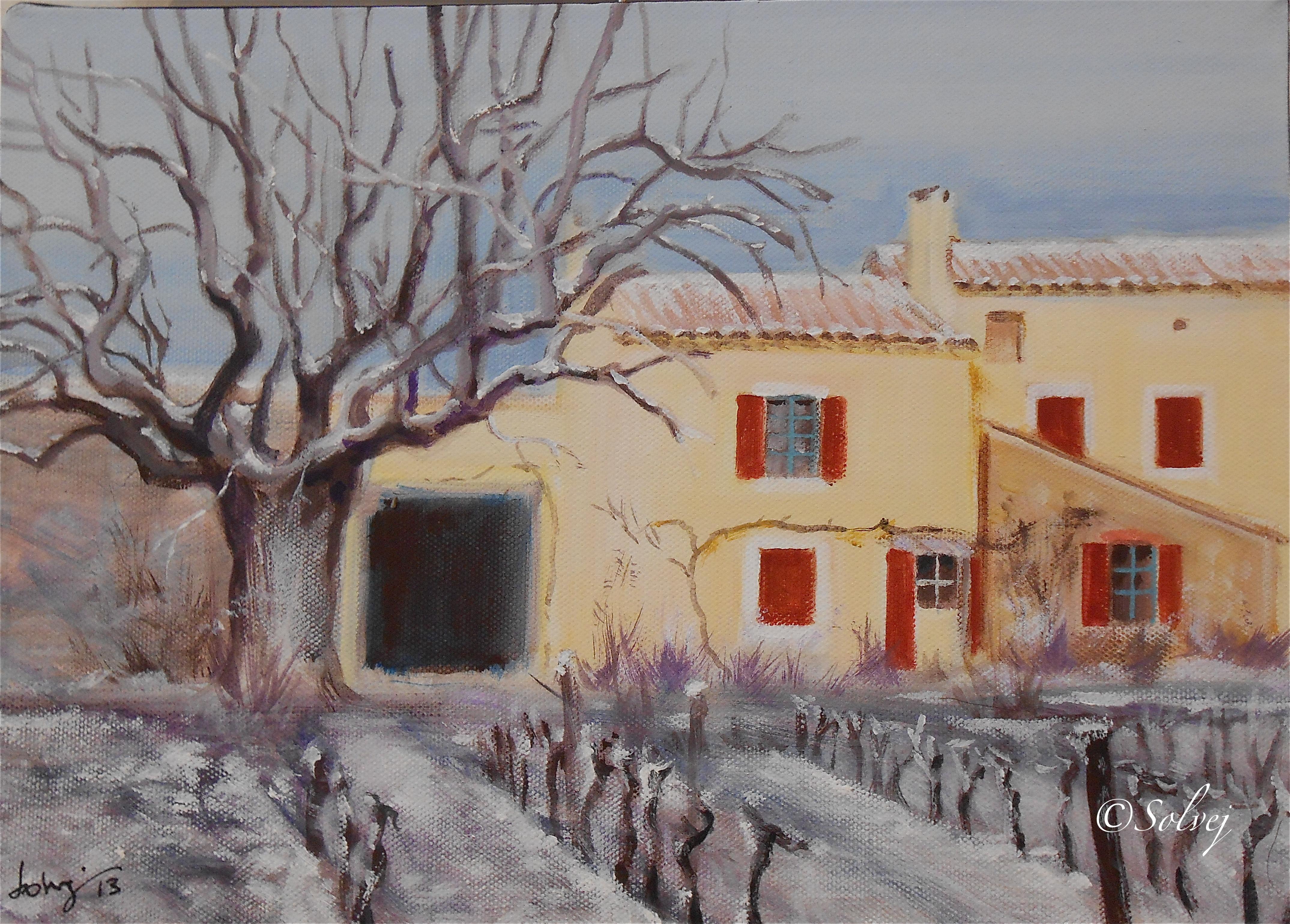 le platane 6, hiver 594