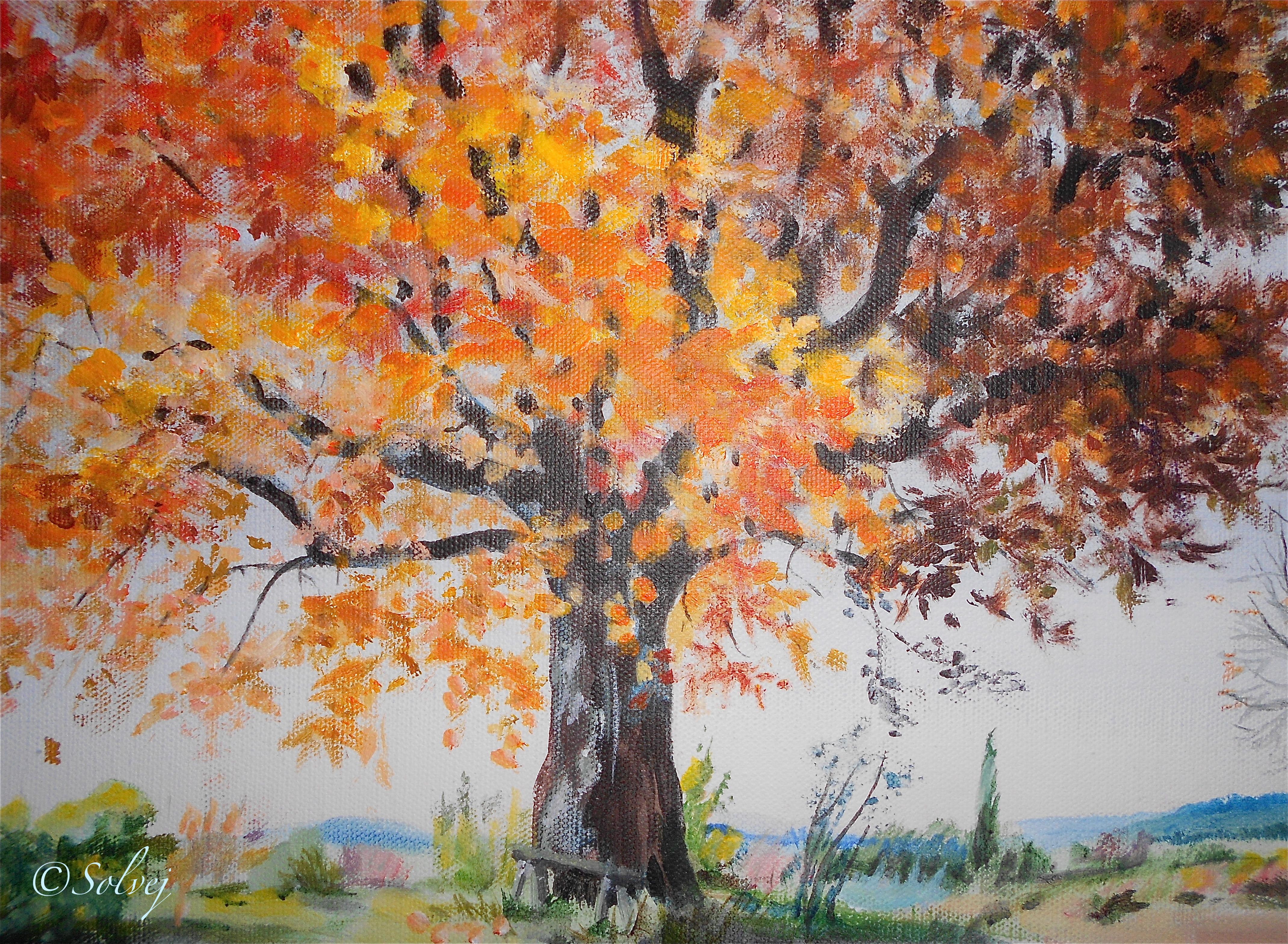 le platane 4, automne 583