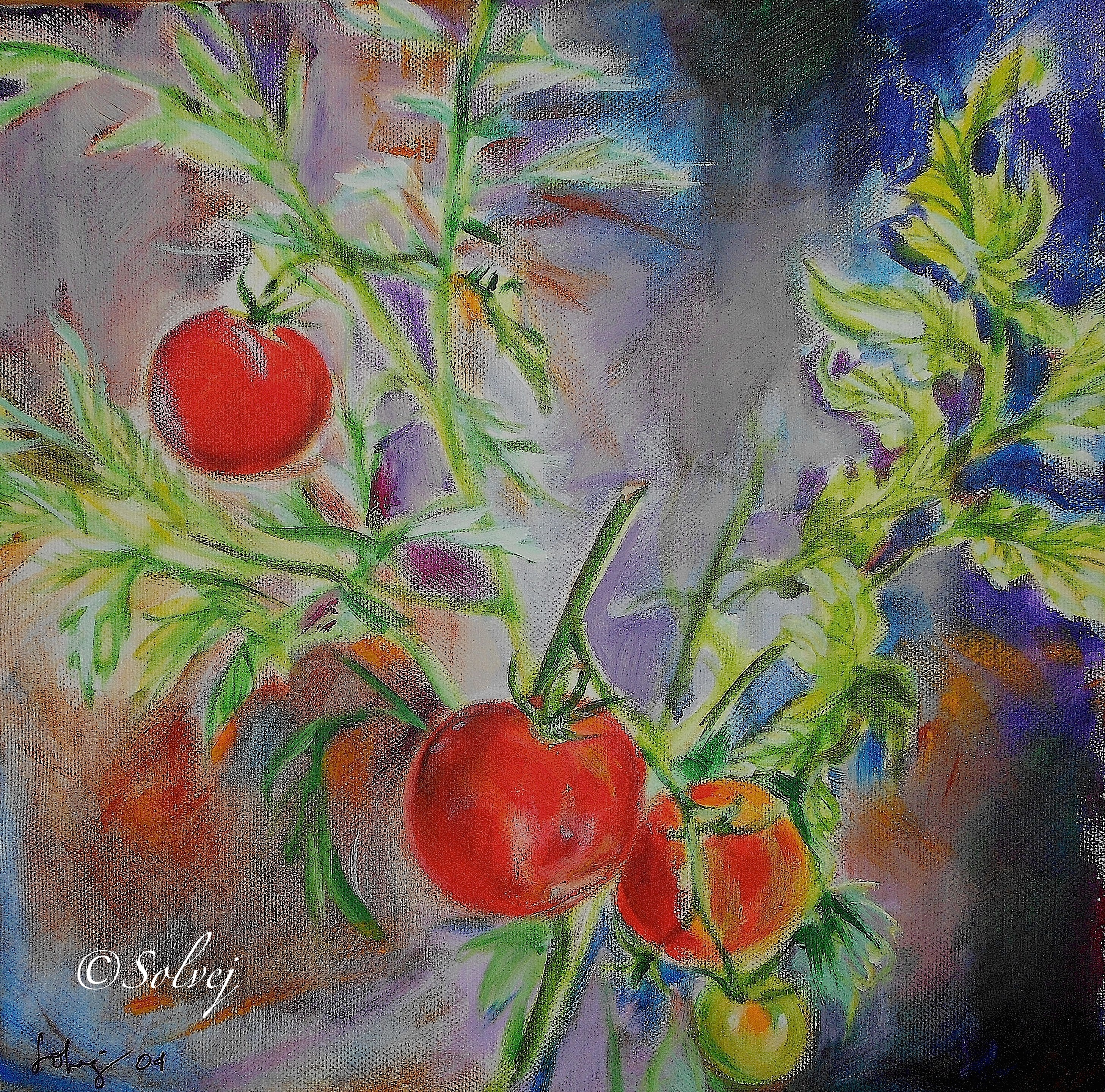 tomates 456-Ac 30x30 8_2003 - copie.JPG