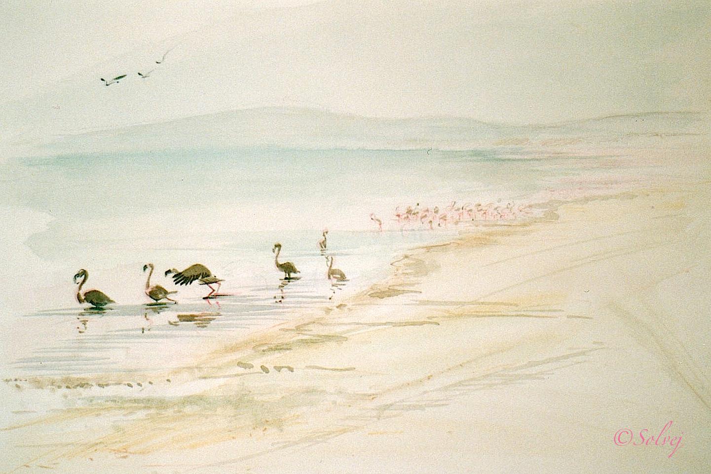 lac Naivasha 193-A 36x26 7_1987