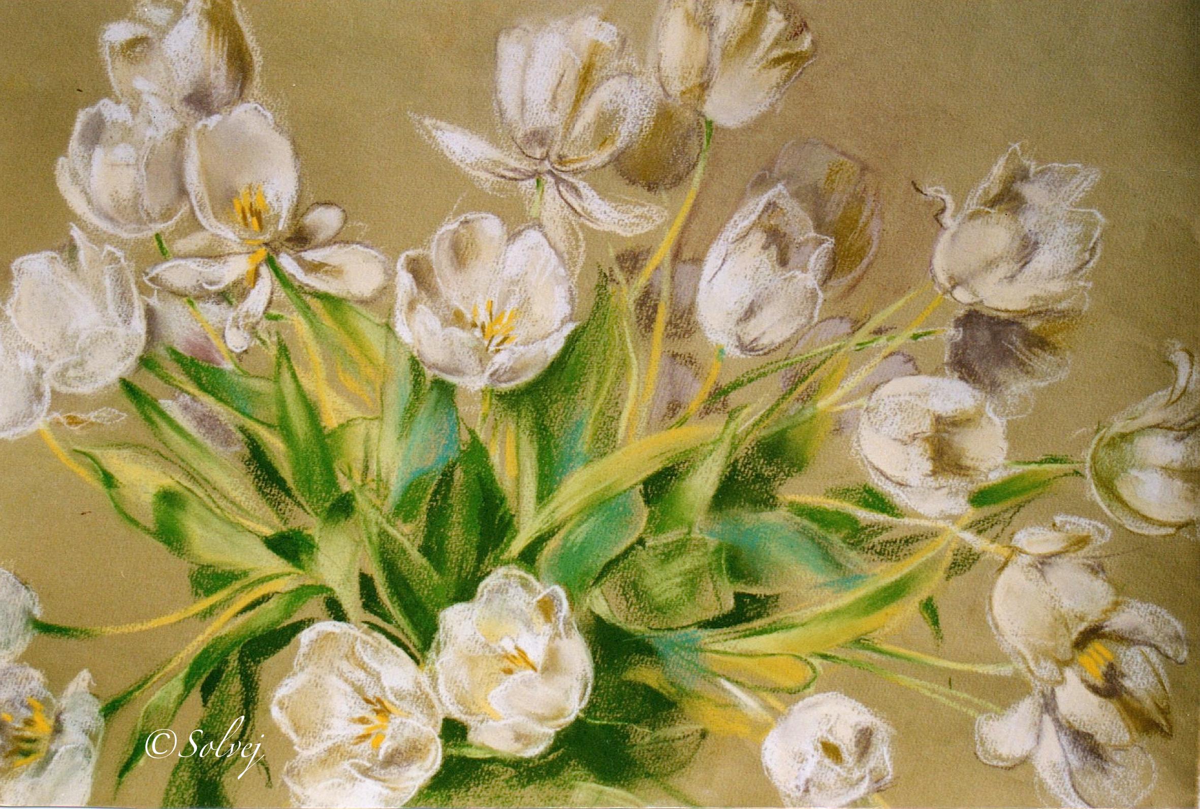 Bouquet de tulipes blanches  319