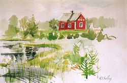 vers_Arvidsjaur_(Laponie_suédoise)_149-A