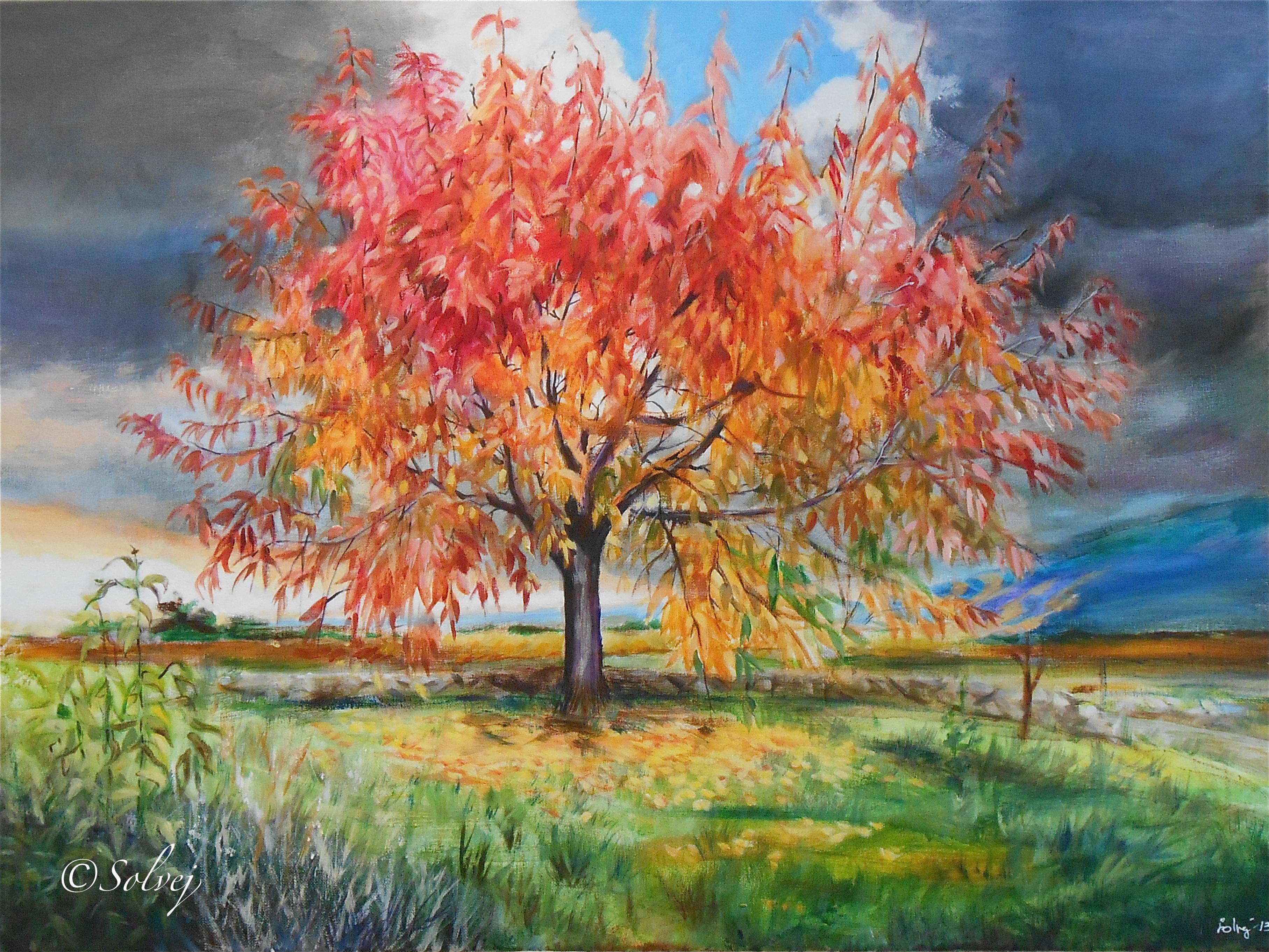 Le Cerisier 597