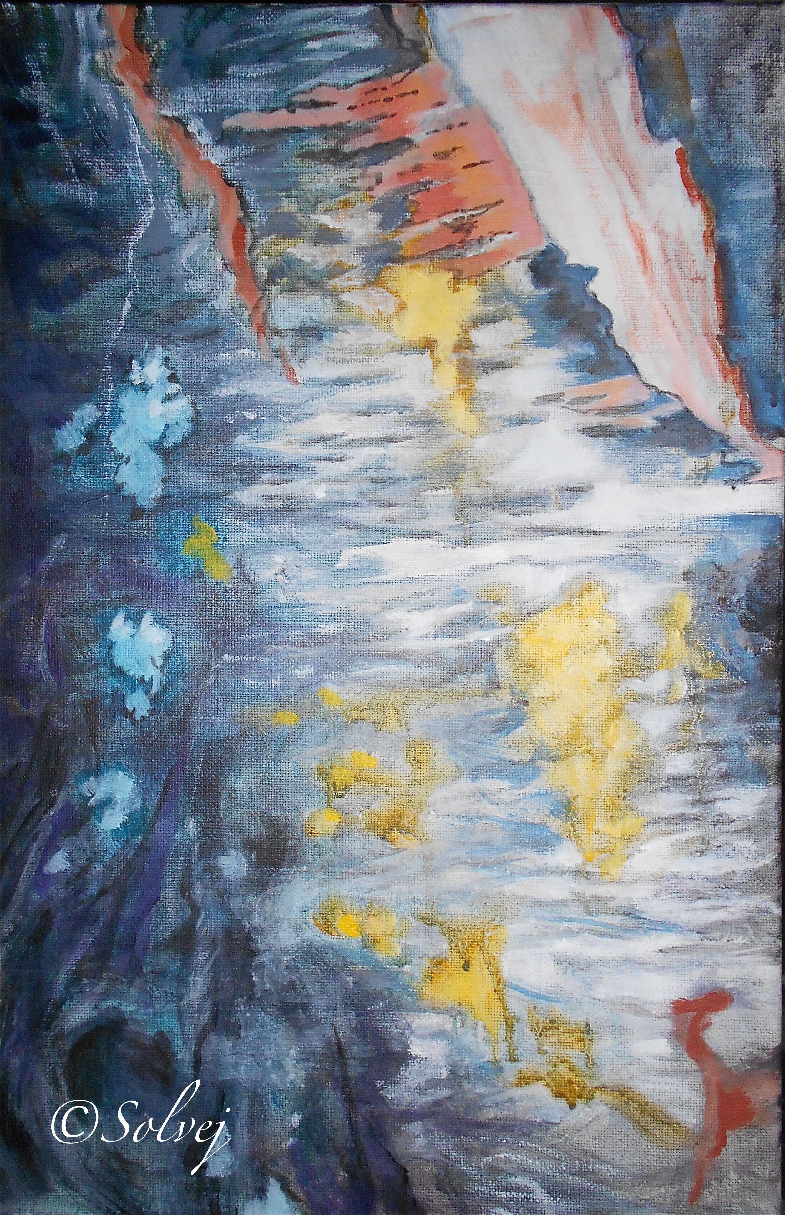 Le cerisier 3, écorce   578