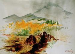 Etna 202-A 40x30 8_1989
