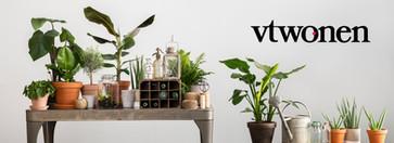 VT-wonen-e-flora-planten-bezorgen.jpg