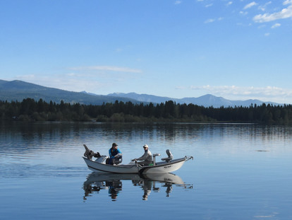 The Economic Value of Fishing in the Henry's Fork Watershed
