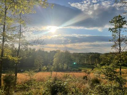 Farmland and Irrigation: A Birds-Eye View