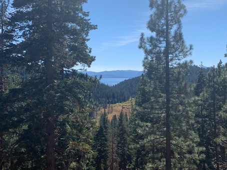 Never have I ... lived in South Lake Tahoe.