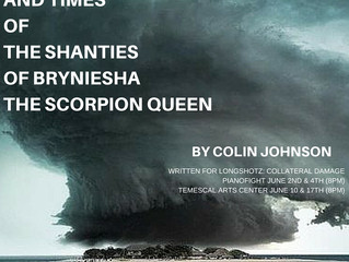 THE LIFE  AND TIMES  OF  THE SHANTIES  OF  BRYNIESHA THE SCORPION QUEEN  a tragedy in reverse, so a