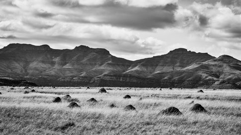 Somewhere near the Free State/Eastern Cape Border Pt.2