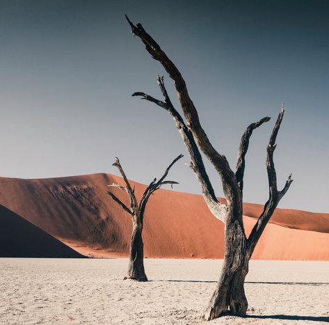 Deadvlei Namibia Pt. 2