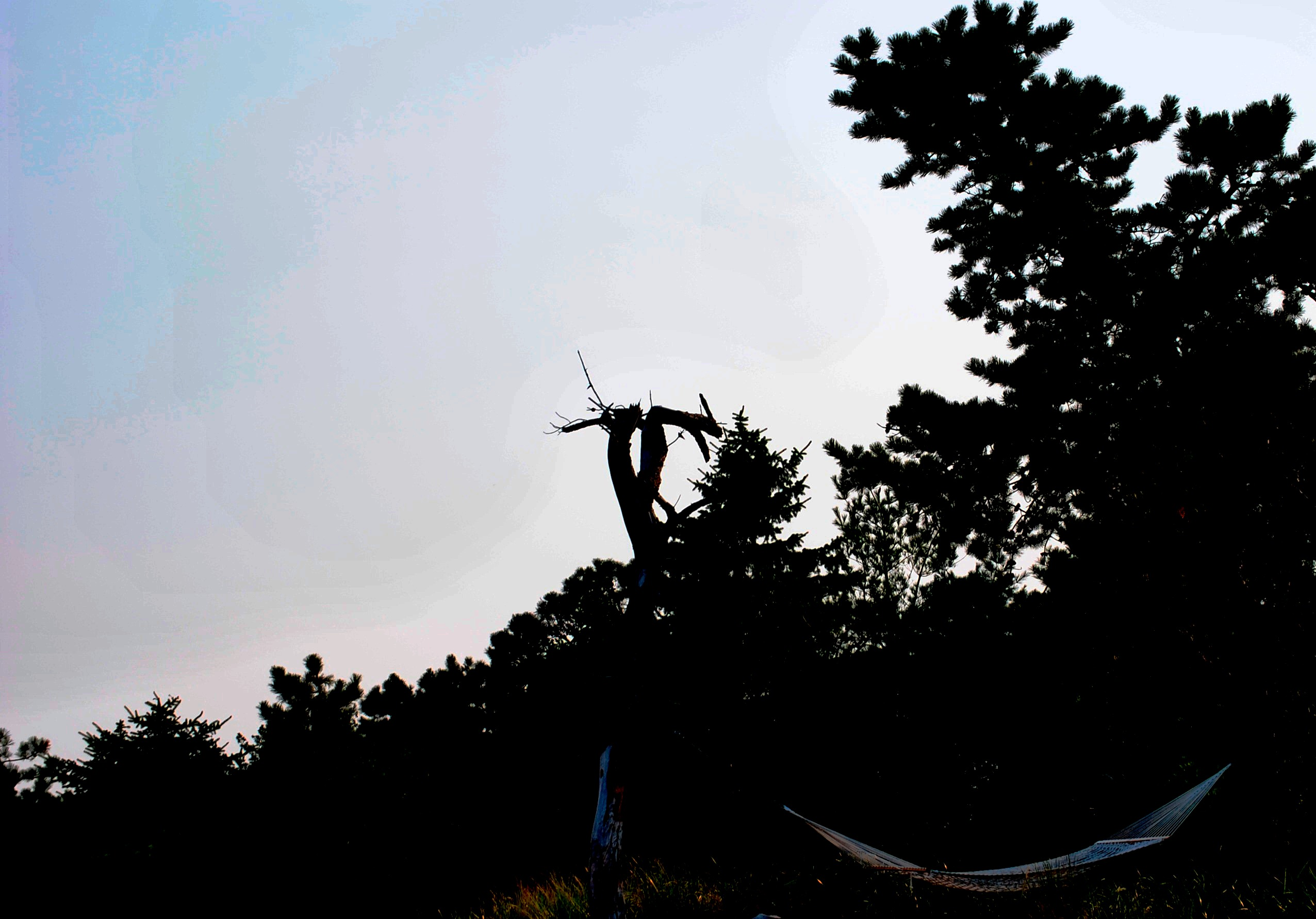 Maine 2012 Final (40)