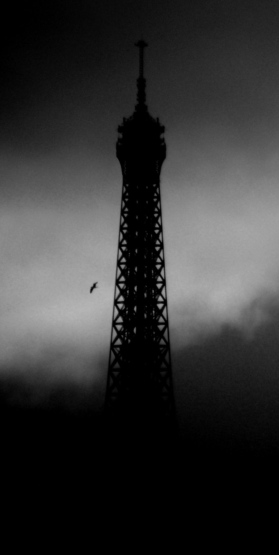 Paris (282)