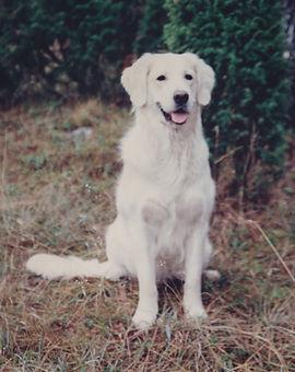 Corinne Britt-Marie Rudh 1995.jpg
