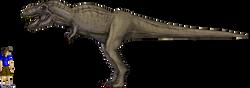 sT_Rex