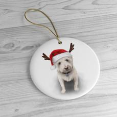 winston-ornament.jpg