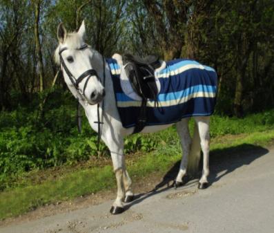 Fleece 3/4 Ride on Rug