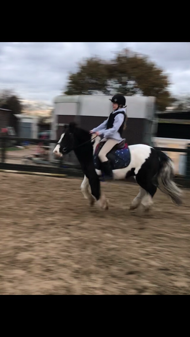 Evie Gibbs and paddy - class 2