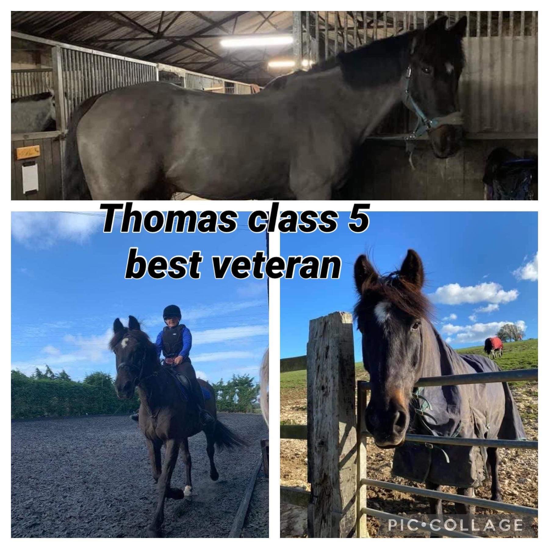 Claire Sheppard - Thomas - class 5