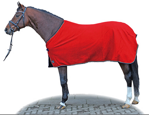 Saddle Pad and Show Rug - **Free Embroidery**