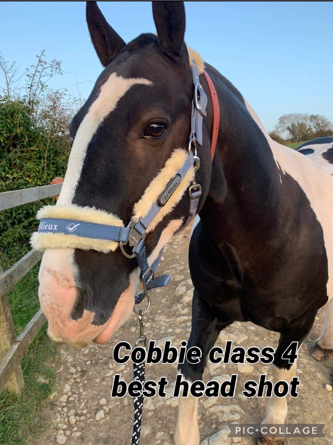 Claire Sheppard- Cobbie - class 4