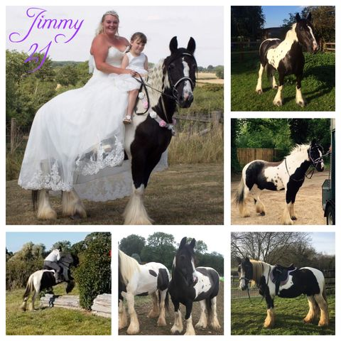 Jade Wheeler & Jimmy - class 6