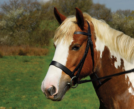 Heritage English Leather Hunter Bridle