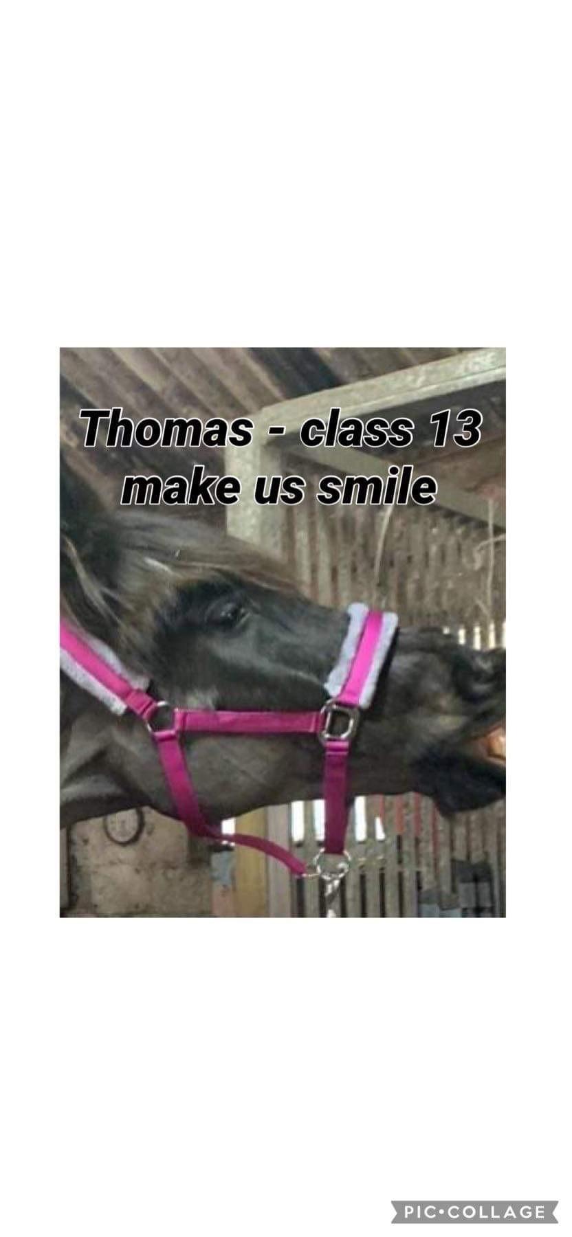 Claire Sheppard-Thomas - class 13