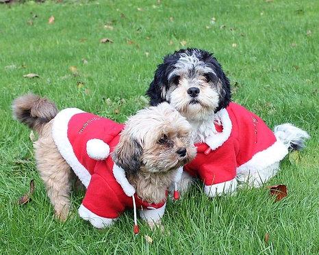 Christmas Dog Coat