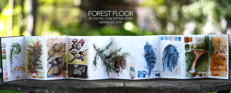 BOOK FIVE Forest Floor Blue Feather.jpg