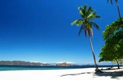 Visit Tortuga Island