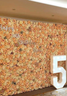 50 Light Up Numbers Essex and Flowerwall