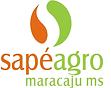 Sapé Agropastoril Ltda