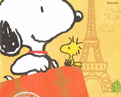 'International Dog Day' - 26th August