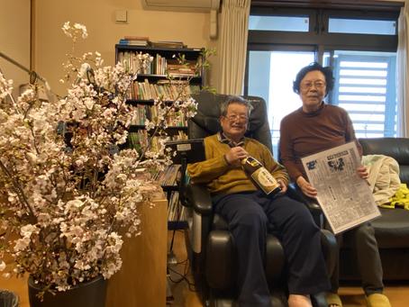 『岡崎の桜が見たい』