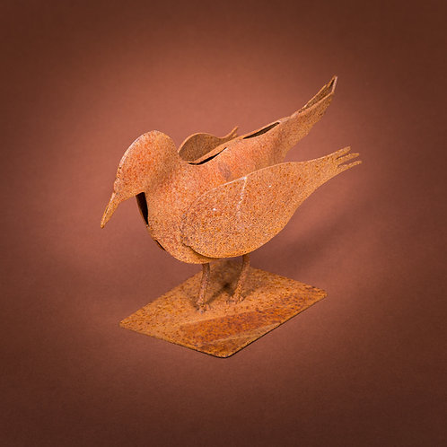 Vogel (versch. Grössen)