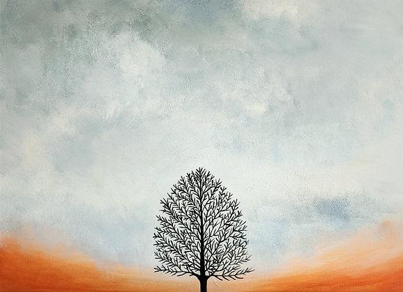 Tree and Orange Sky