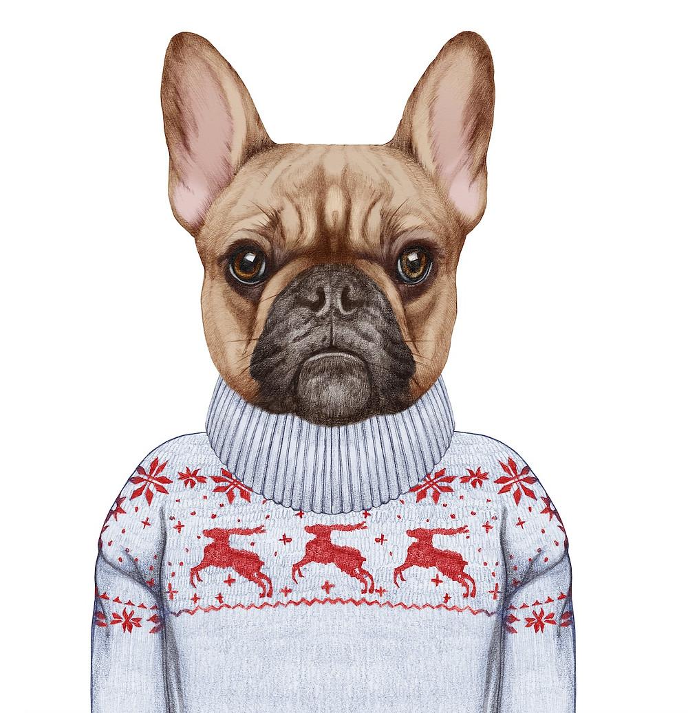 Duke loves Fergie 2017 Gift Guide for dog lovers